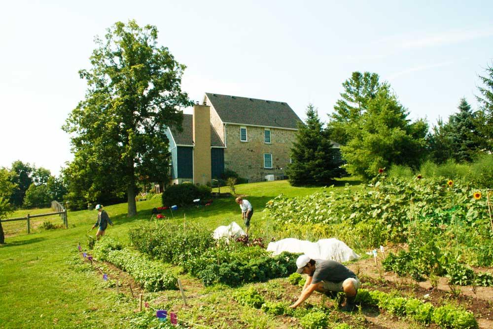 Cedar-Haven-Farm