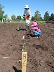 Volunteers Preparing Garden
