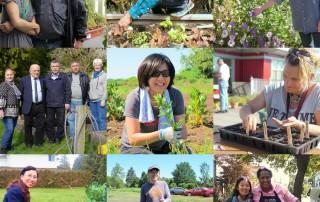 Garden Network Mosaic