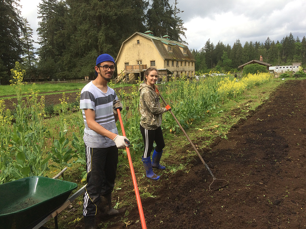 Surrey High School Students at Brooksdale Farm