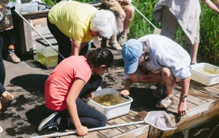 Girls in Action and Evergreen Seniors Pond Dipping