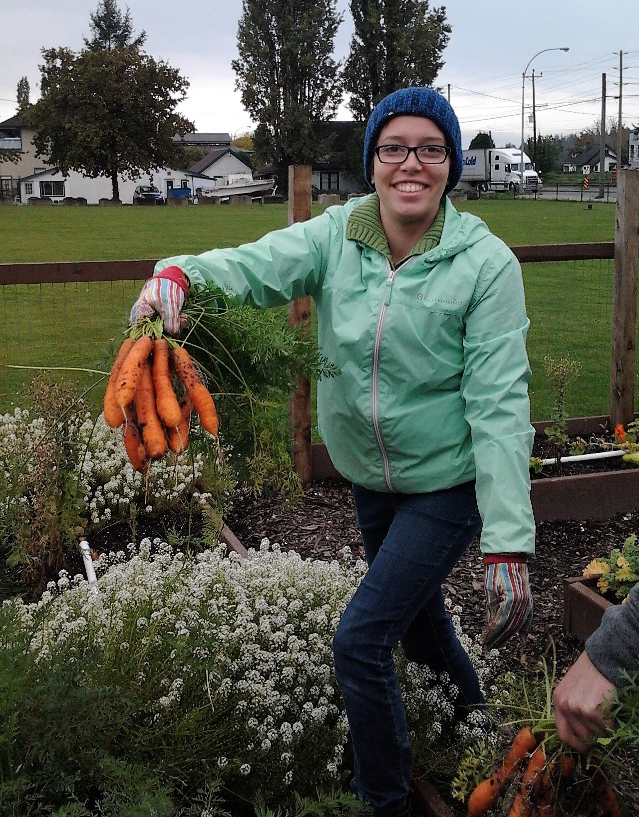 Esther Cannon harvesting carrots Christ Covenant Church Community Garden, Langley 2016