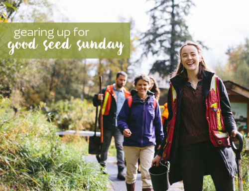 5 Ways to Take Community Action this Good Seed Sunday