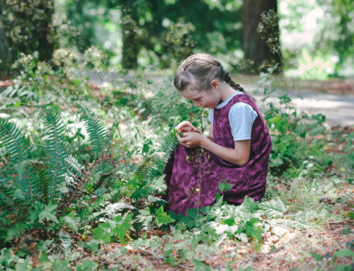 Fun & Easy Nature-Based Activities for the Whole Family!