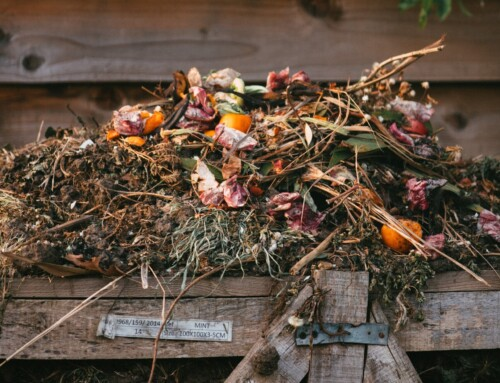 Composting Collaboration Takes Off