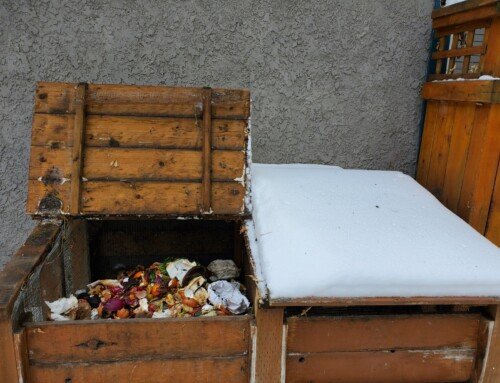 Winter Composting and Waiting for Easter Sunday