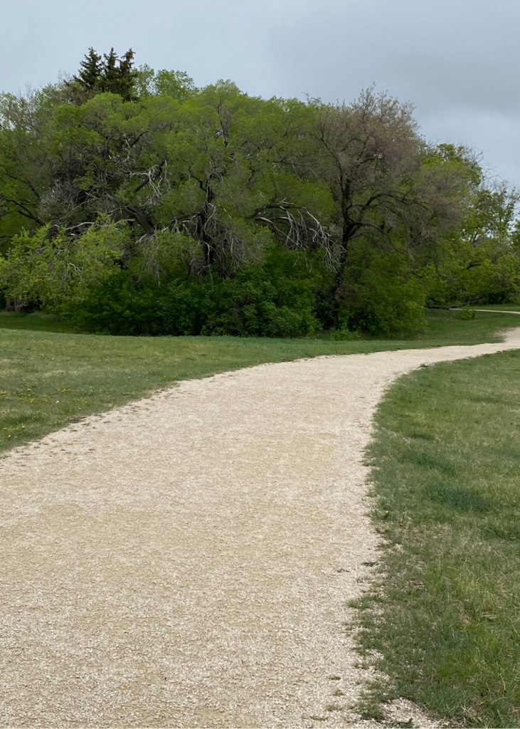 Gravel pathway with grass on either side and large trees in the distance. Rainclouds in the sky.